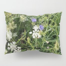 Chicory and Queen Anne's lace flowers Pillow Sham