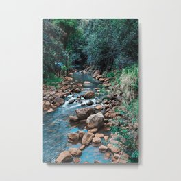 Flowing Botanical Garden Creek Portrait Metal Print