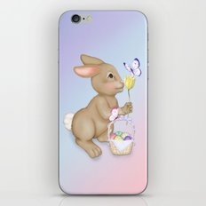 Brown Bunny and Basket iPhone & iPod Skin