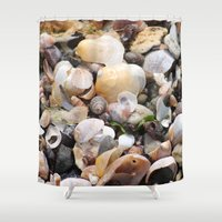 shells Shower Curtains featuring Shells by BACK to THE ROOTS