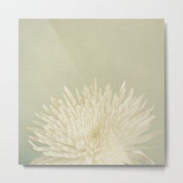 Pale Beauty Metal Print
