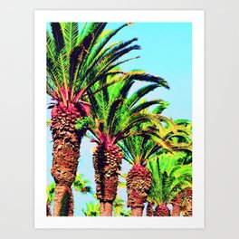 palmiers (Morocco) Art Print