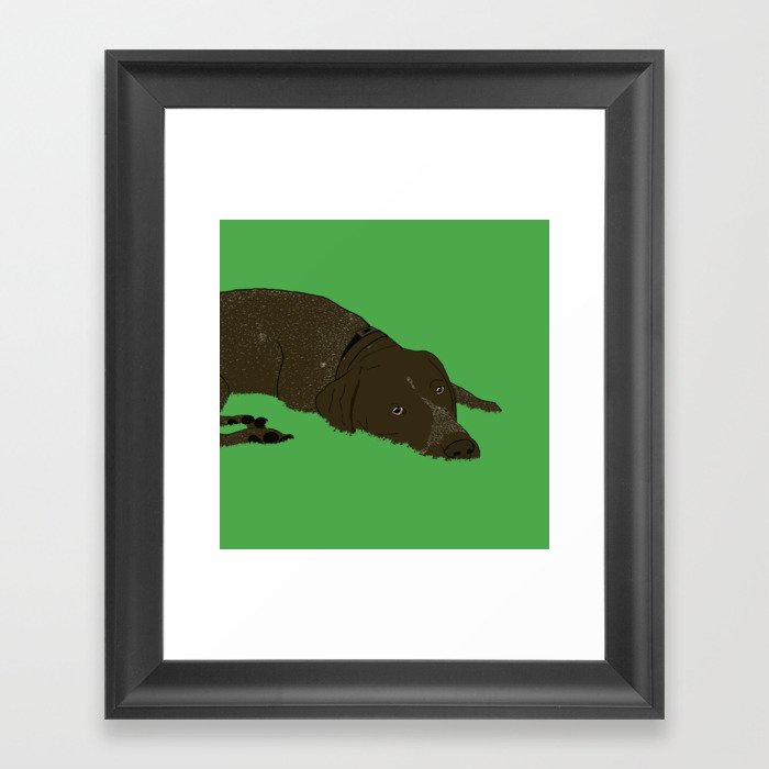 Gunner the German shorthaired pointer Framed Art Print