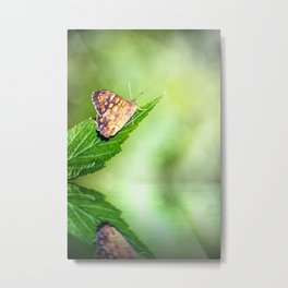 Brown butterfly insect on leaf with fresh water reflection Metal Print