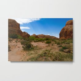 Desert Scene Metal Print