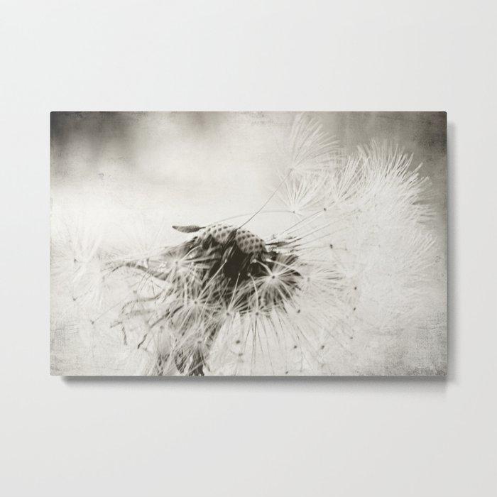 wind swept Metal Print