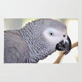 Handsome Grey Rug