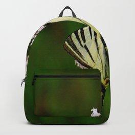 Scarce Swallowtail On Wild Garlic Flowers Backpack