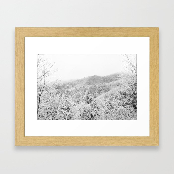 Carolina Winter Framed Art Print
