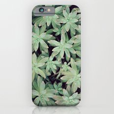 Succulent Abstract Slim Case iPhone 6s