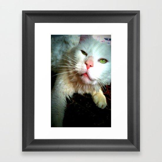crazy kitty Framed Art Print