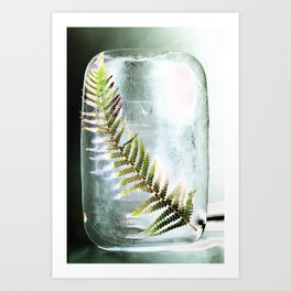 Frozen Fern Art Print