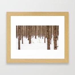 Cluttered  Framed Art Print