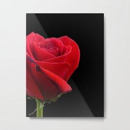 ROSE ON BLACK Metal Print