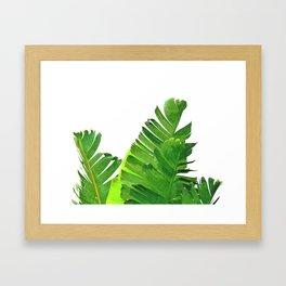 Palm banana leaves tropical watercolor illustration Framed Art Print