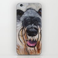 schnauzer iPhone & iPod Skins featuring Schnauzer by Doggyshop