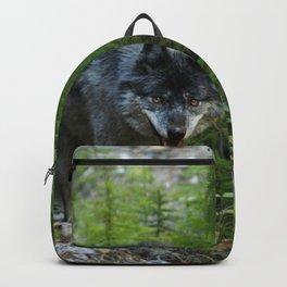 Stalking - Alpha Male Grey Wolf Backpack