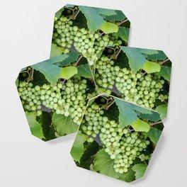 Vineyard art, Botanical prints, Leaf prints Coaster