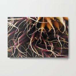 Carrot Colors Metal Print