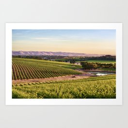 McLaren Vale Magic Art Print