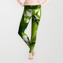 Kyoto Maple Leggings