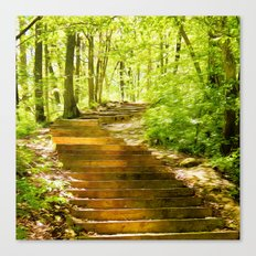 Steps Through The Forest Canvas Print