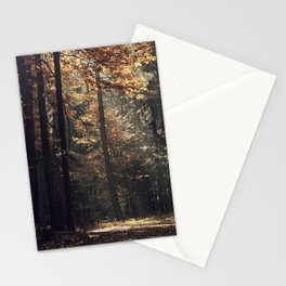 Autumn light and rays - horizontal Stationery Cards