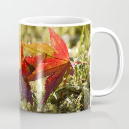 Indian Summer II Red marple leaves in wet grass at backlight Coffee Mug