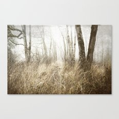 MIMICKED FORMS IN A MYSTERIOUS WOOD Canvas Print