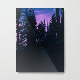 0423 Metal Print