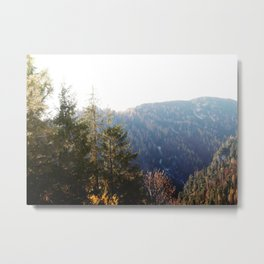 In the Mountains #1 # wall #art #society6 Metal Print