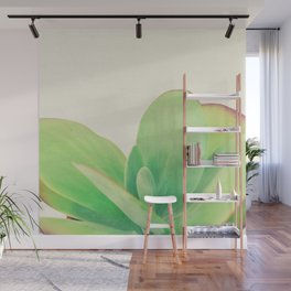 Paddle Plant Wall Mural