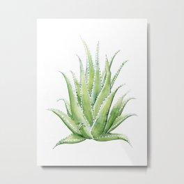 Aloe Vera - Desaturated Metal Print