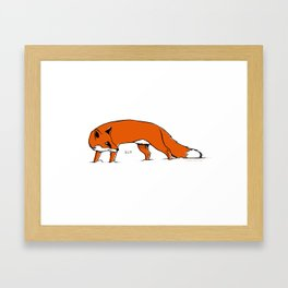 Sly Fox Framed Art Print