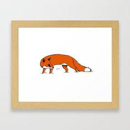 Sly Fox Framed Art Print