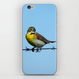 Bird on Barbwire iPhone Skin