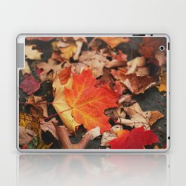 crimson leaves Laptop & iPad Skin