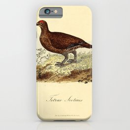 Red Grouse Ptarmigan10 iPhone Case