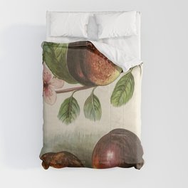 The fruit growers guide  Vintage  of peach Comforters