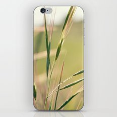 Summer Green iPhone & iPod Skin