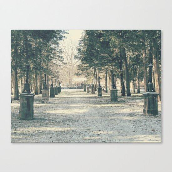 Winter's Guardians Canvas Print