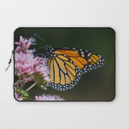 August Monarch Laptop Sleeve