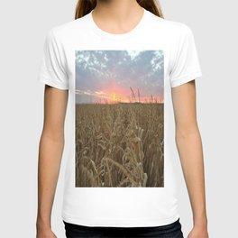 Corn Maze Sunset T-shirt