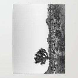 JOSHUA TREE / California Desert Poster