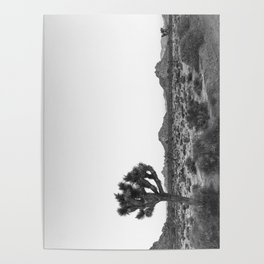 JOSHUA TREE / California Desert Poster