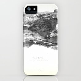 The Zoology of the Voyage of H.M.S. Beagle 1840 - Fossil Mammalia - Scelidotherium iPhone Case