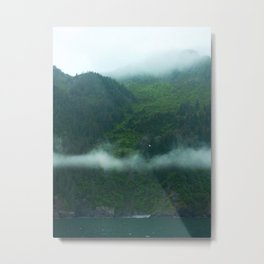 Northern South Coast Rainforest Metal Print