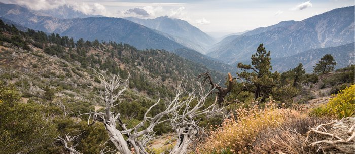 Inspiration Point along Pacific Crest Trail Coffee Mug