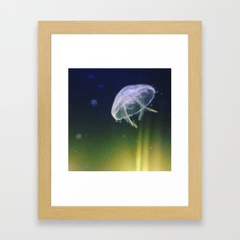 the jellys Framed Art Print