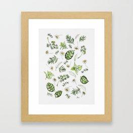 Scattered Garden Herbs Framed Art Print